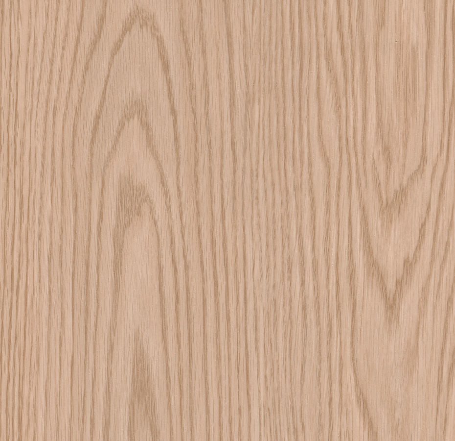312026 Norther Red Oak