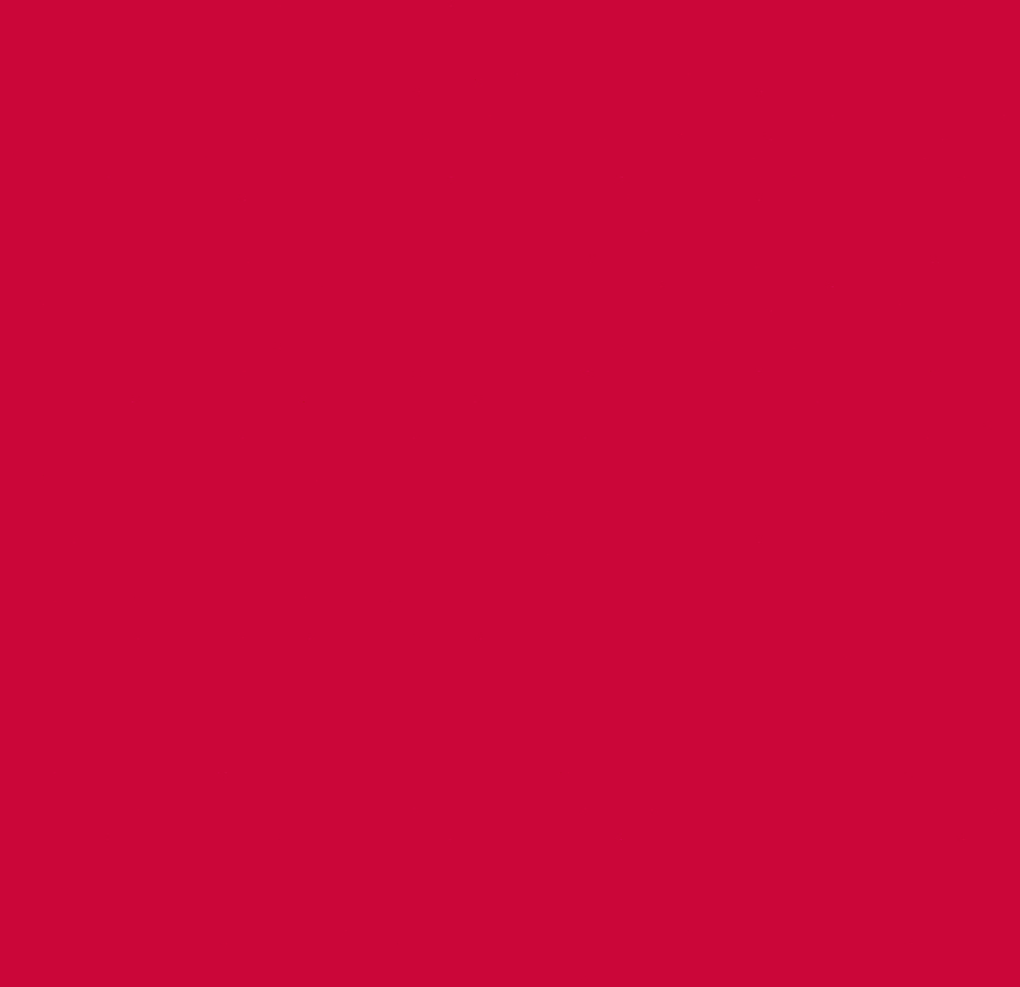 4262 Red