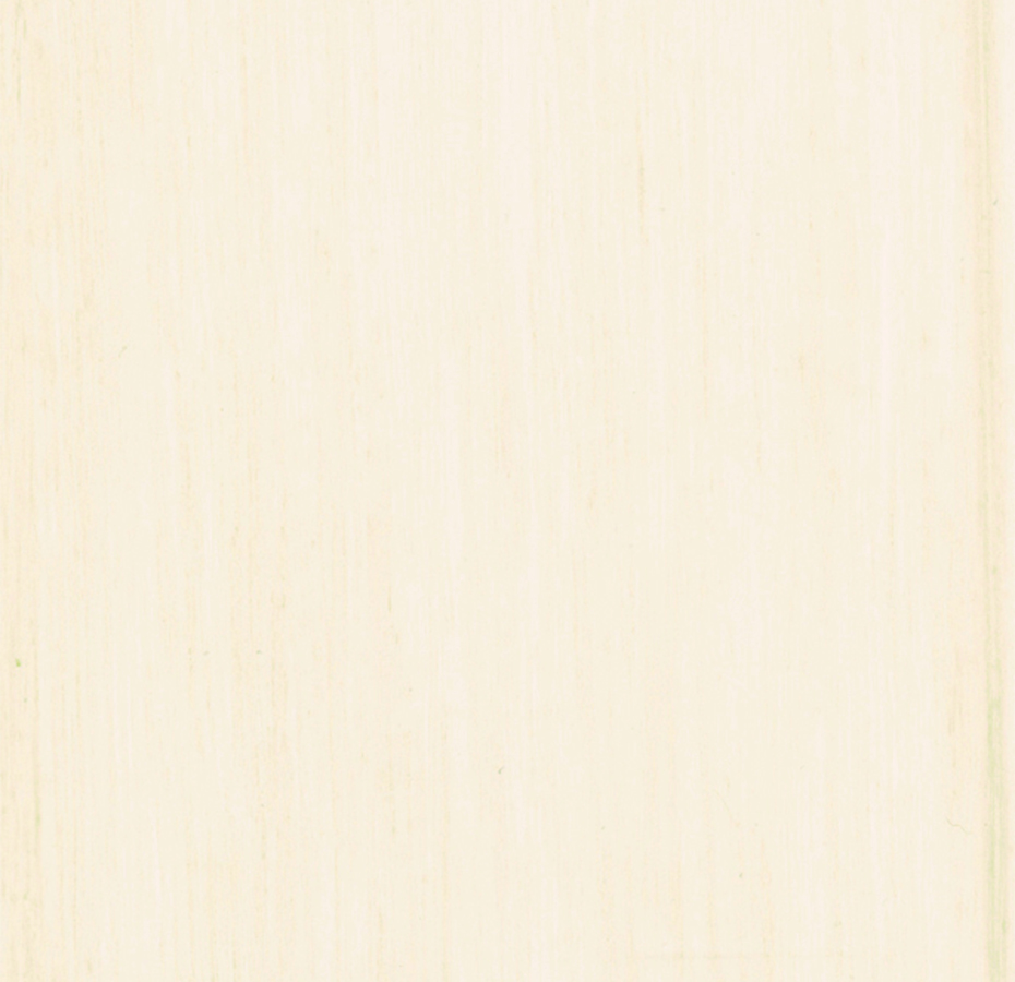 312452 Antique Whitewash